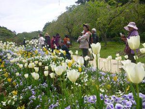 ガーデンや緑地の見学会