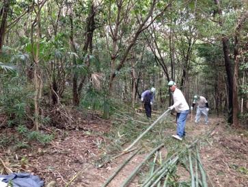 大高緑地の竹林整備