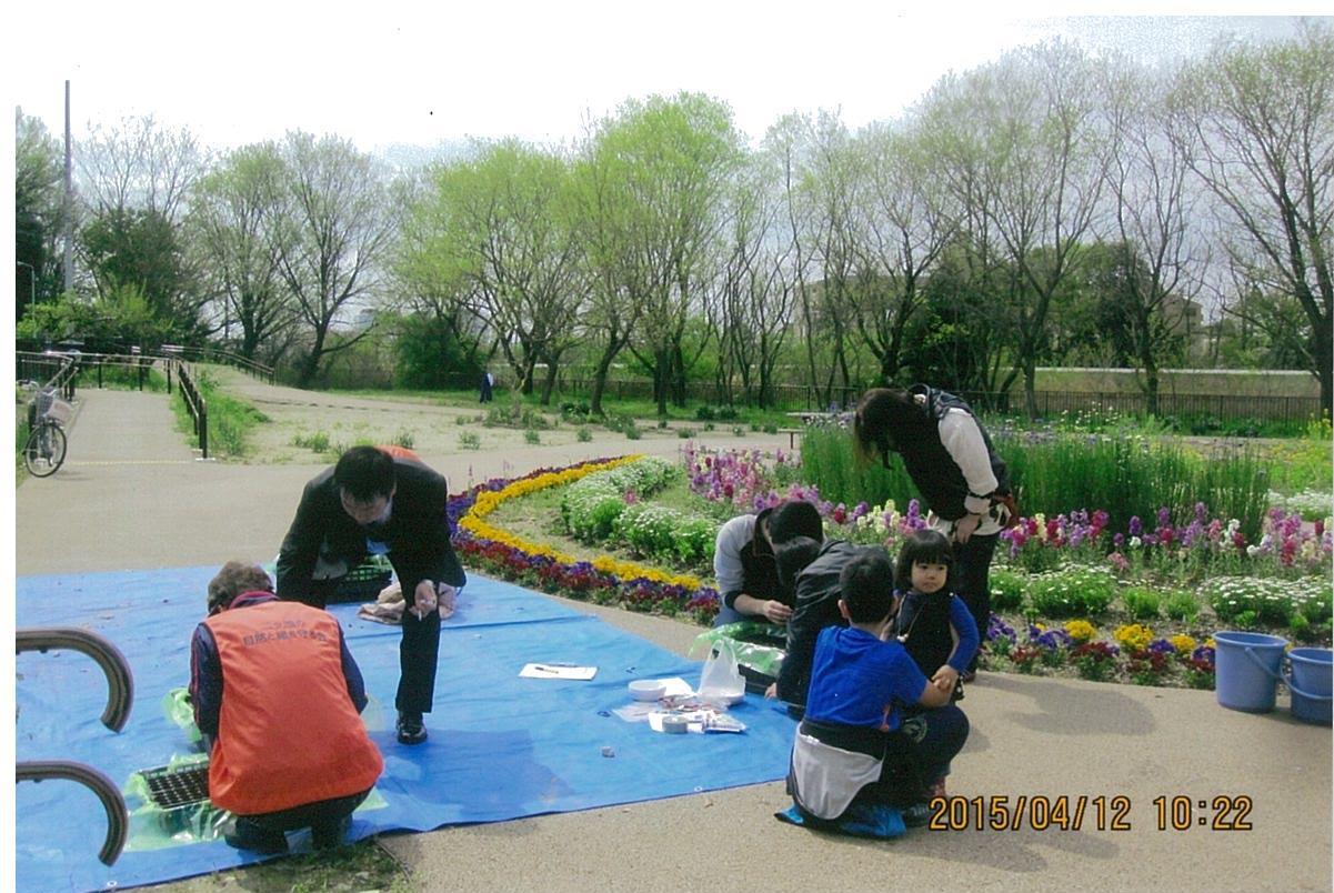 翠松園緑地の花壇