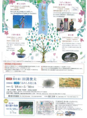 0410徳川園牡丹まつり裏のサムネイル