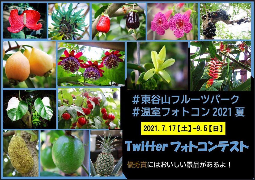 Twitterフォトコンテスト@東谷山フルーツパーク温室