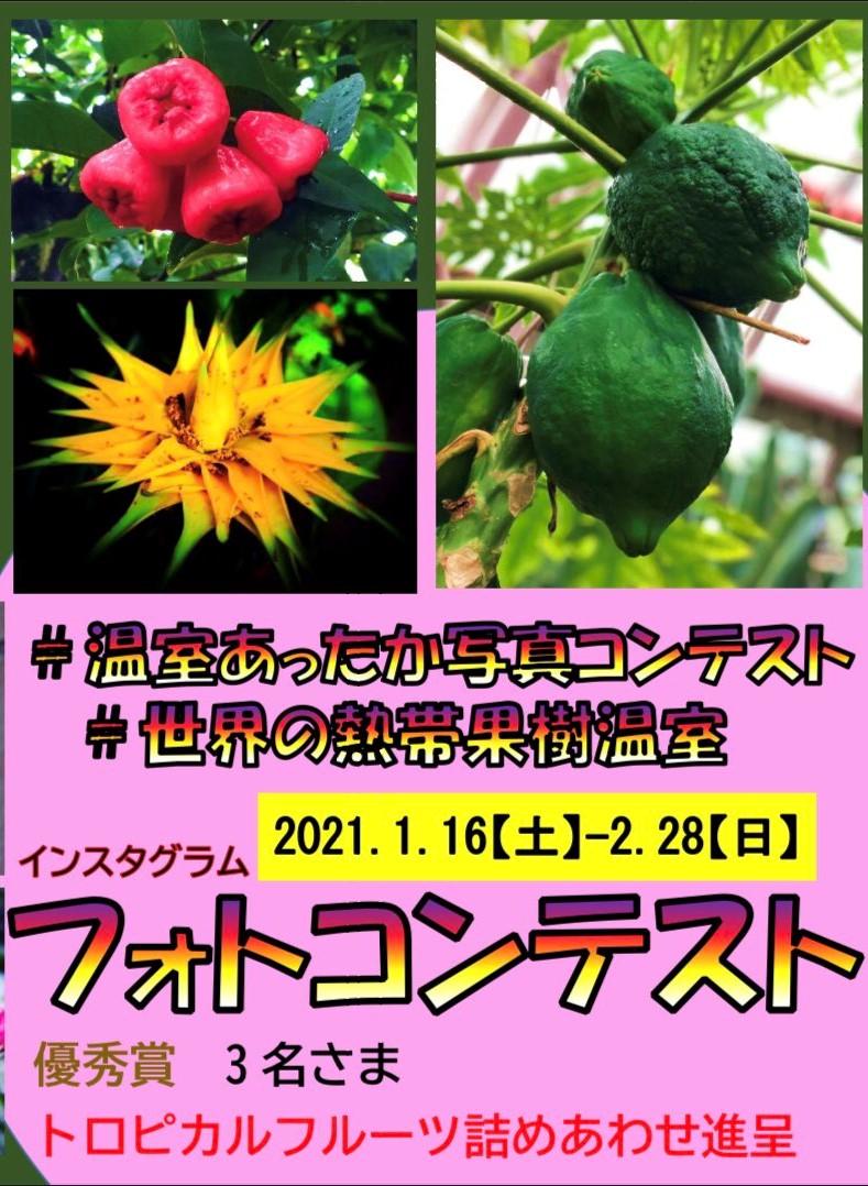 1/16~2/28東谷山FP Instagram温室フォトコンテスト