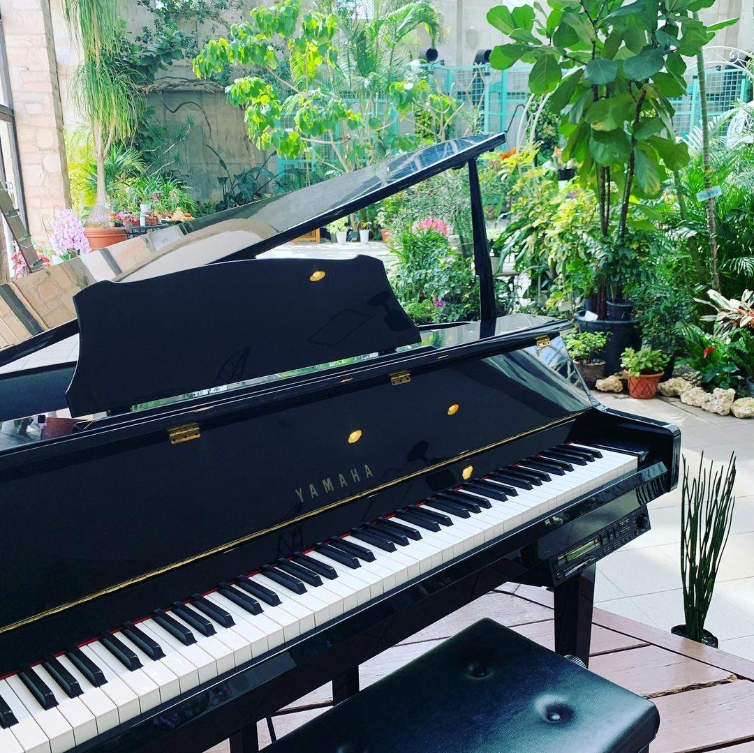 ♪フラリエ*ピアノ 5月の演奏可能日